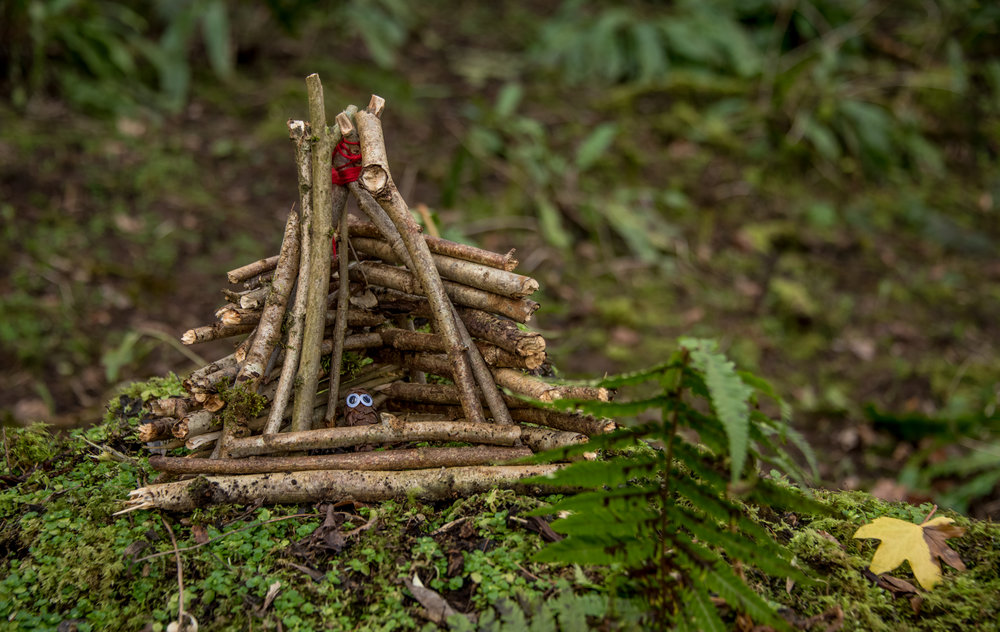 Go Wild Forest School Level 3 Training storytellinng mini den.jpg