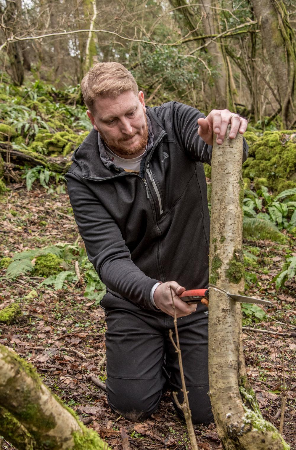 Go Wild Forest School Level 3 Training tools saw hazel.jpg