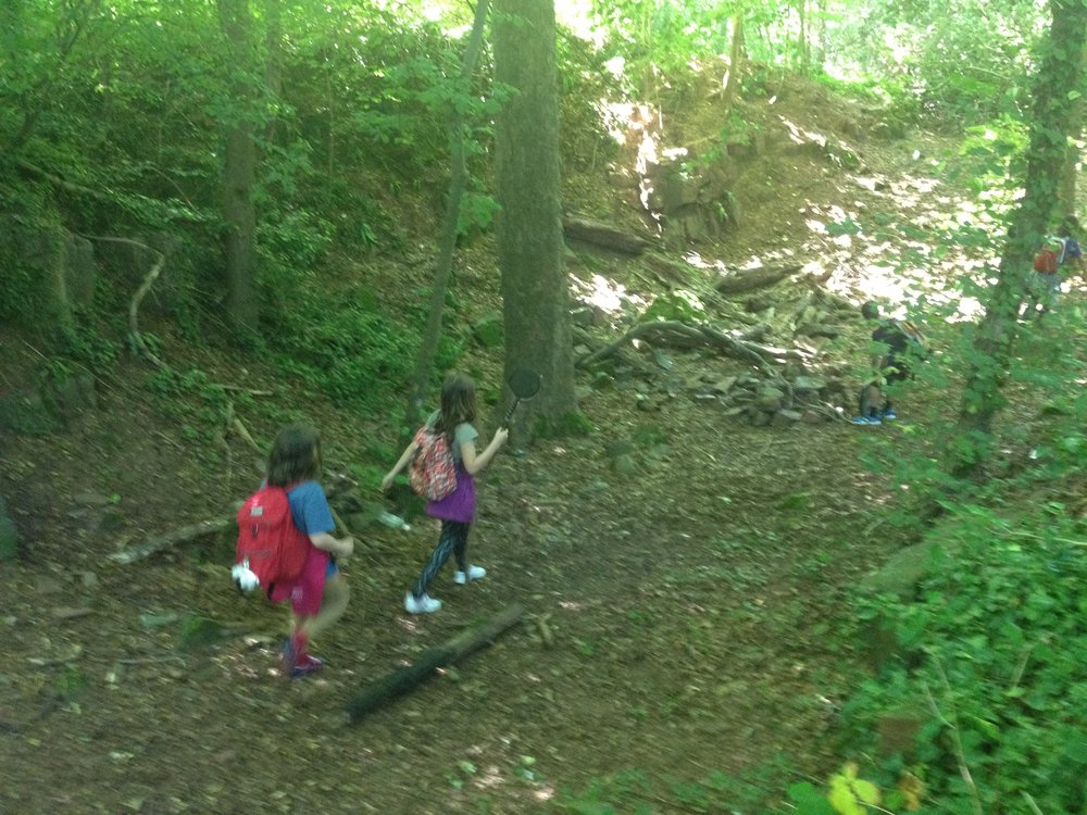 Go Wild Forest School summer.JPG