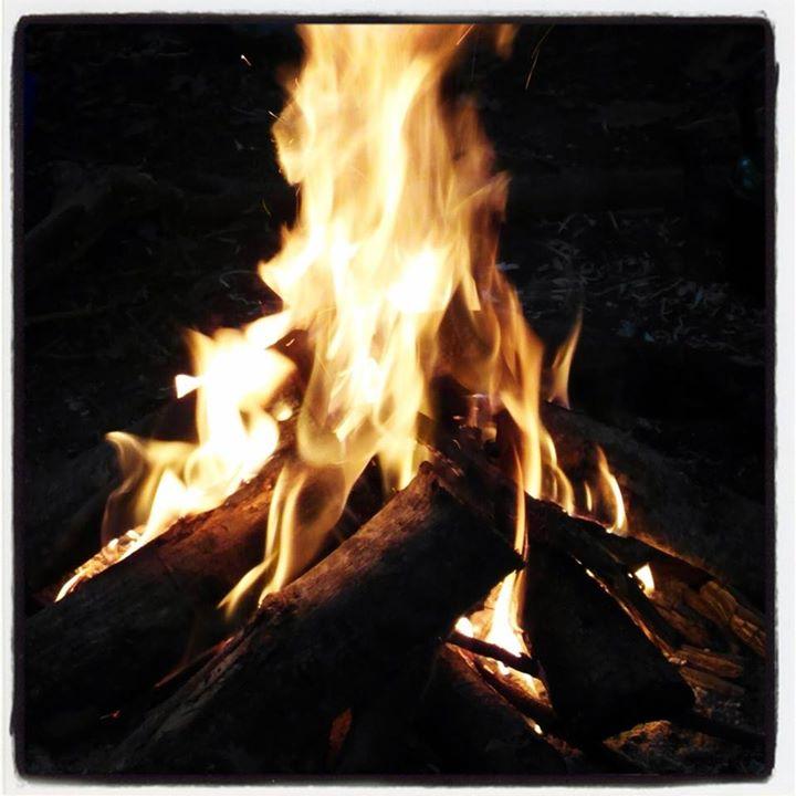 Go Wild Forest School campfire.jpg