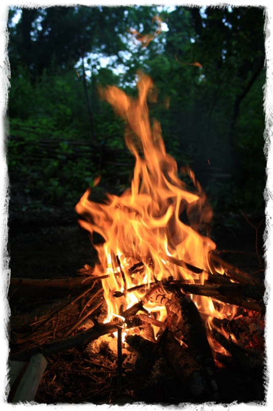 Go Wild Forest School fire (3).jpg