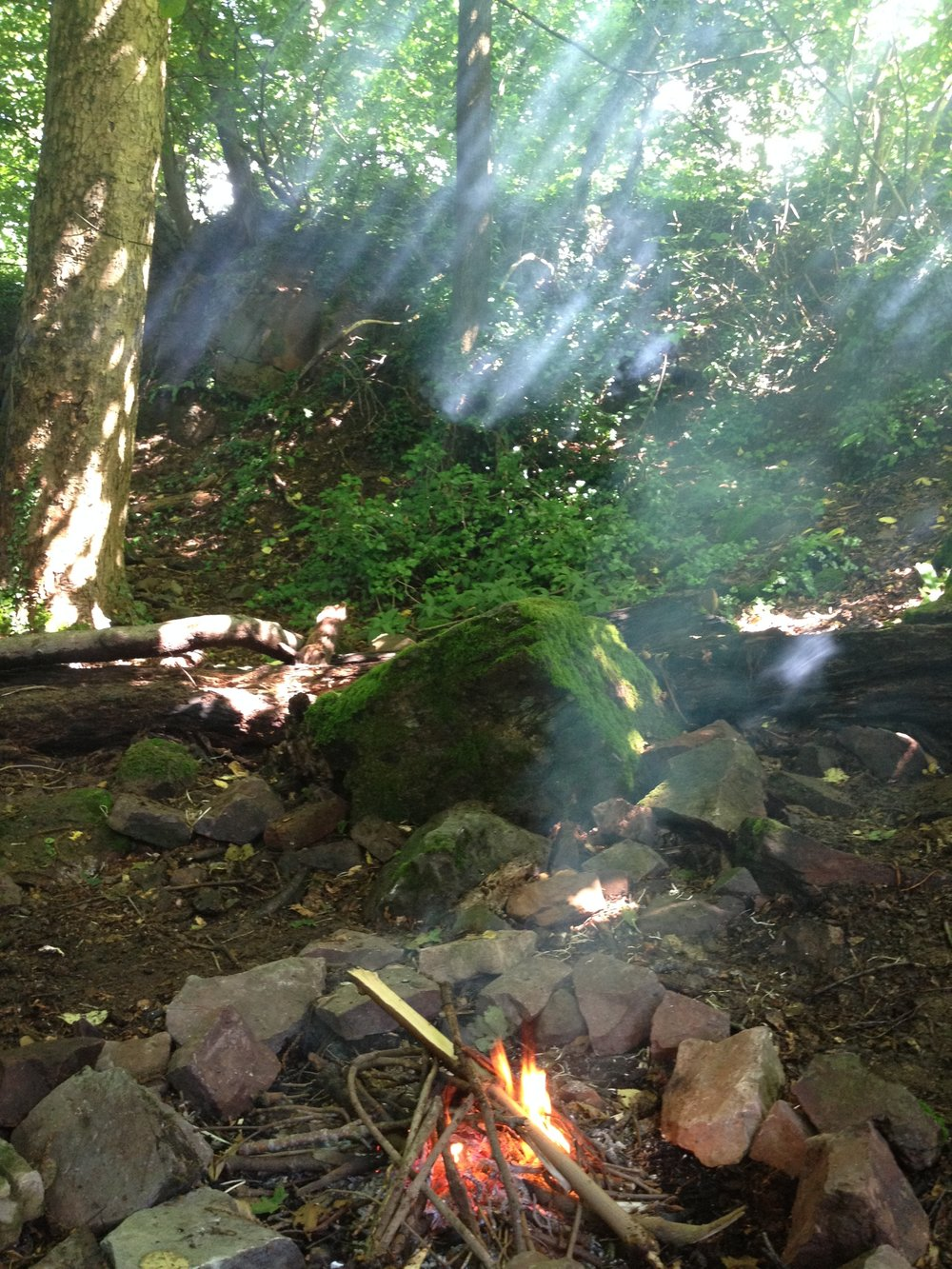 Go Wild Forest School Fire and sunshine.JPG