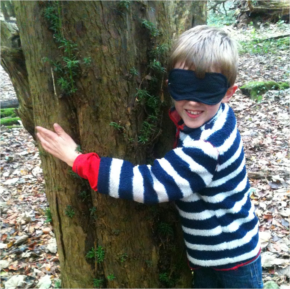 Go Wild Forest School meet a tree.JPG