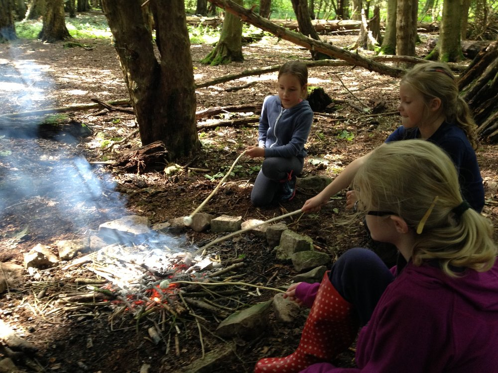 Go Wild Forest School girls and marshmallows.JPG