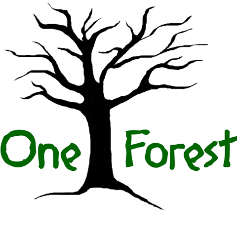 one forest.png