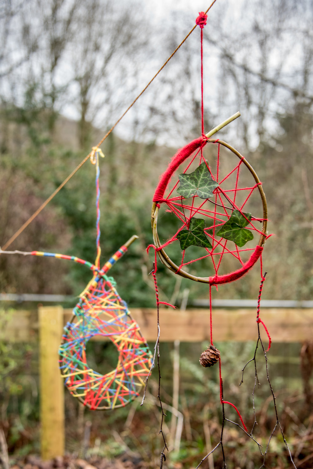 Go Wild Forest School Level 3 Training craft two dreamcatchers.jpg