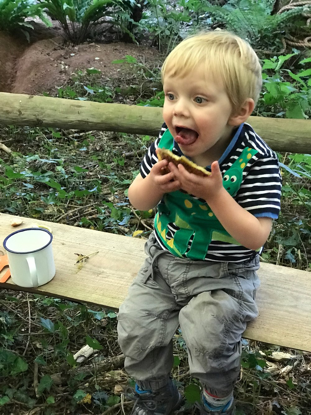 Go Wild Forest School Training Toddlers 2