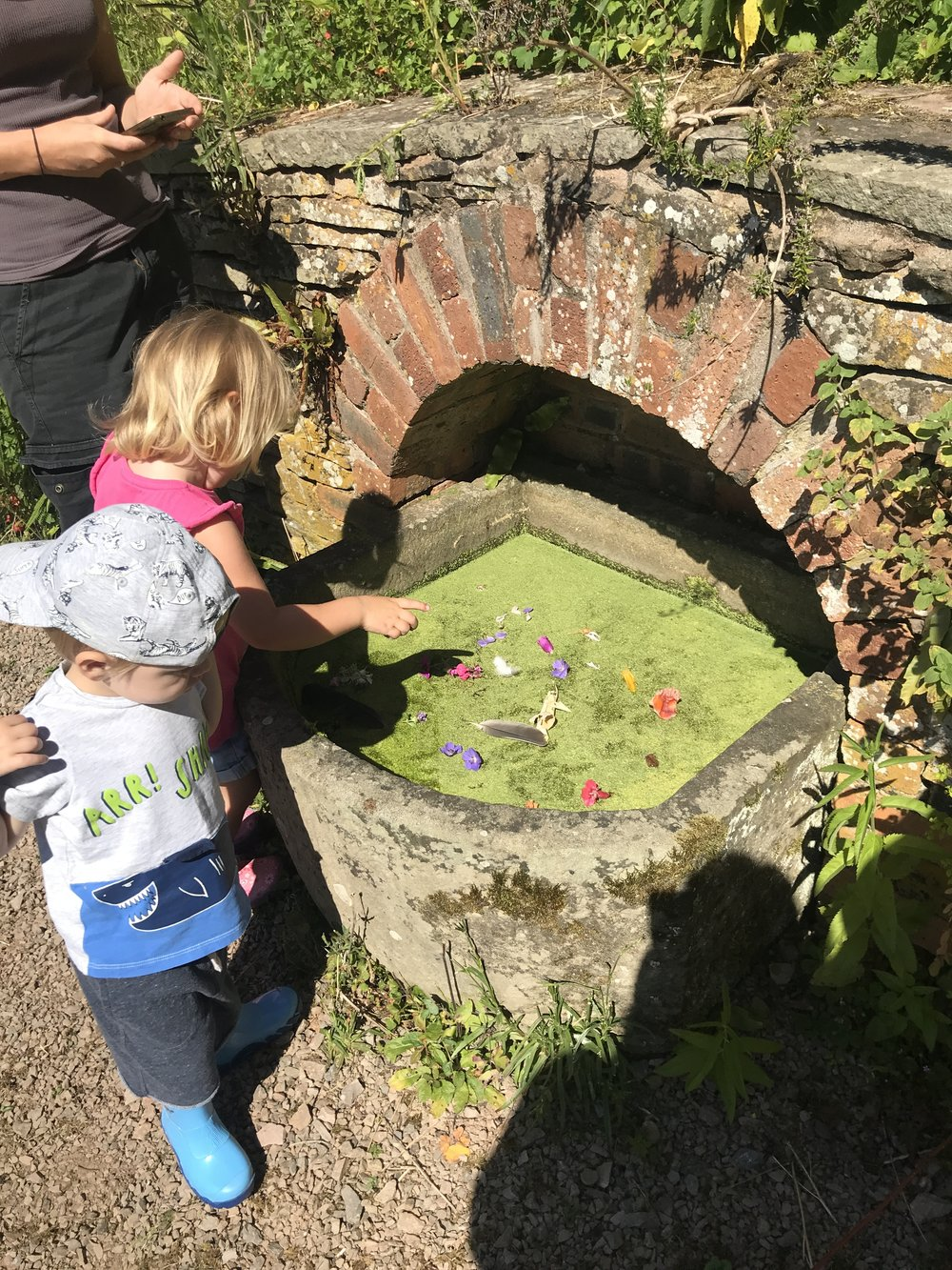 Go Wild Forest School Training Toddlers 7