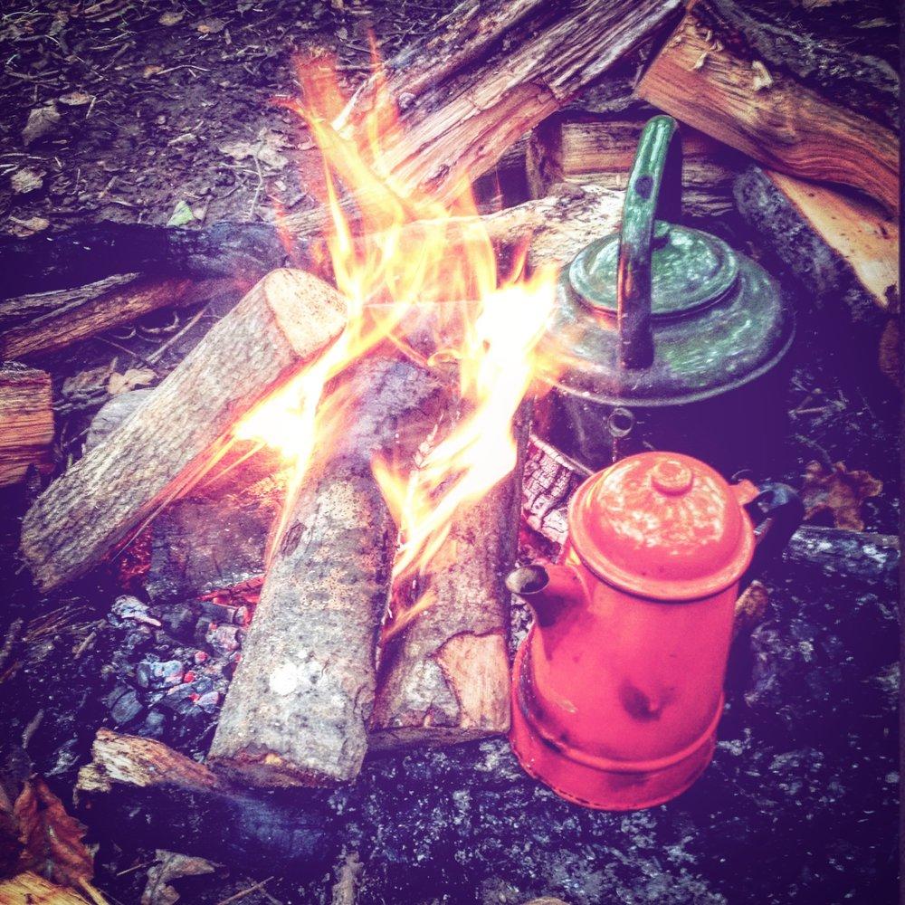 Go wild forest school quotidian life