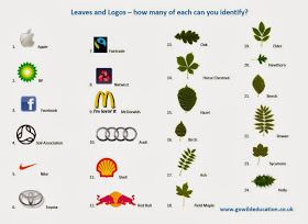 go wild forest school leaves and logos answers.JPG