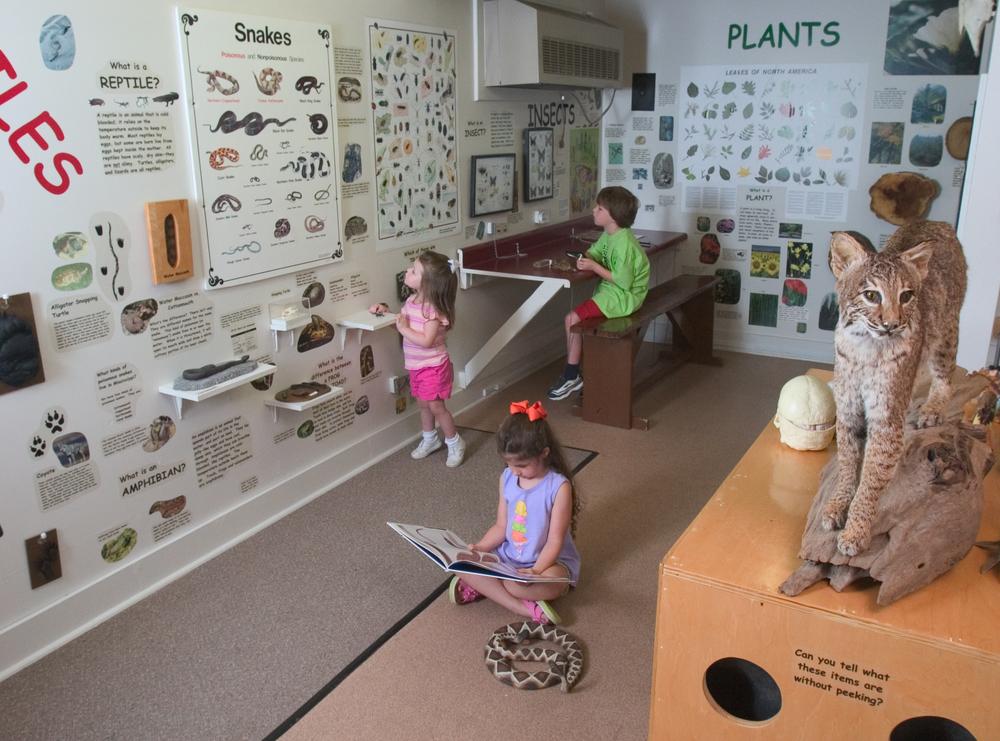 Children's Gallery.jpg