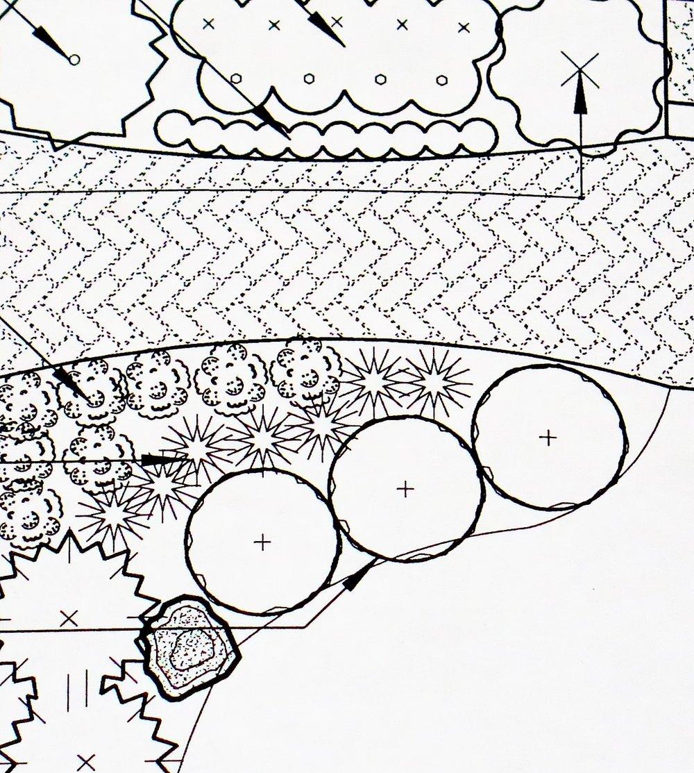 Dynascape crop.jpg