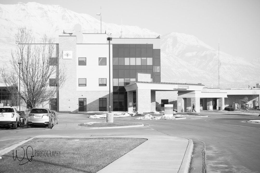 Fresh 48 pictures, American Fork Utah