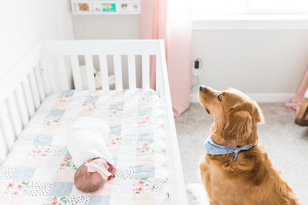 Utah-Newborn_photographer-whitney-bufton-photography-57.jpg