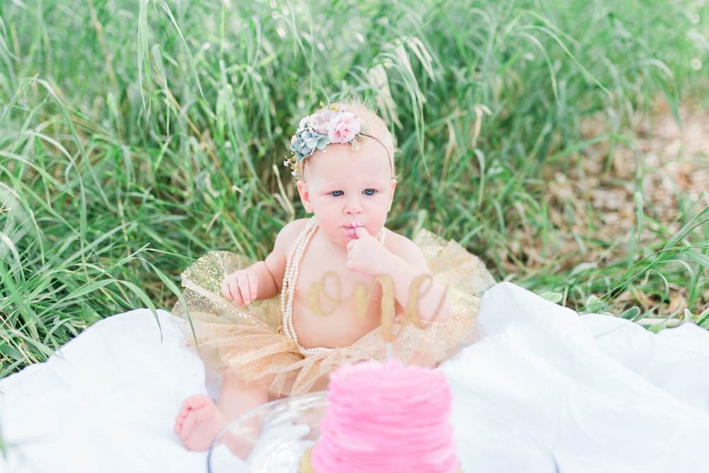 First birthday utah photographer