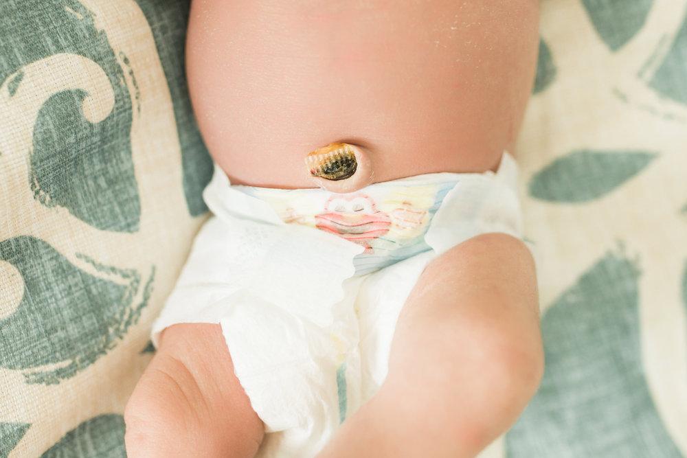 Florida Newborn photographer