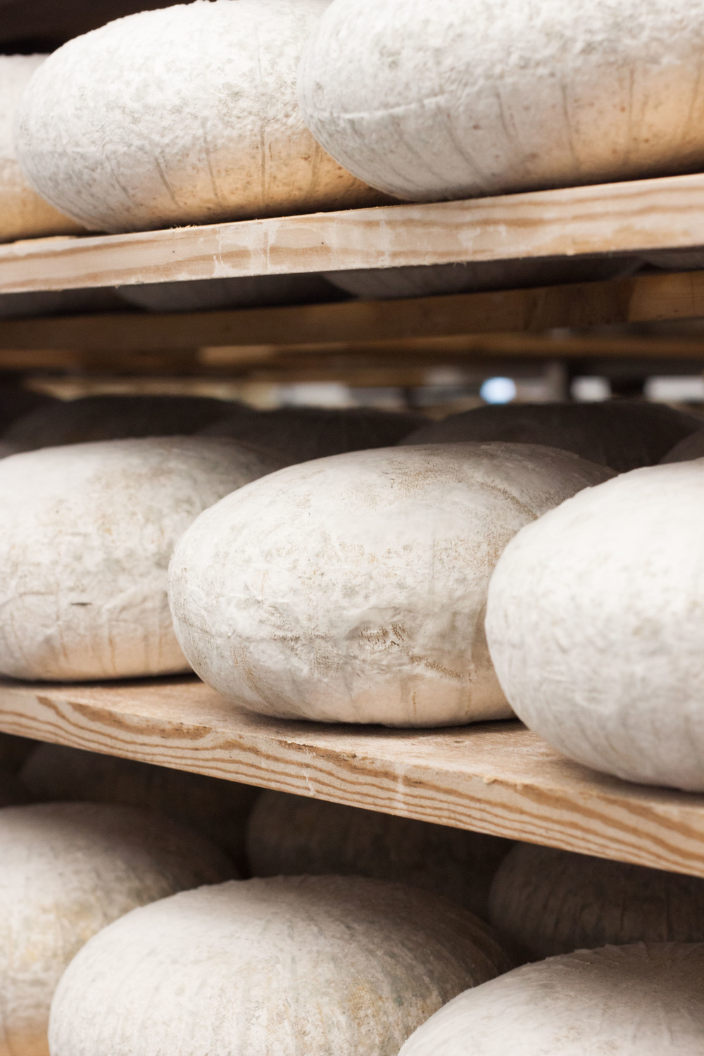 bath_wyfe_cheese_shelf