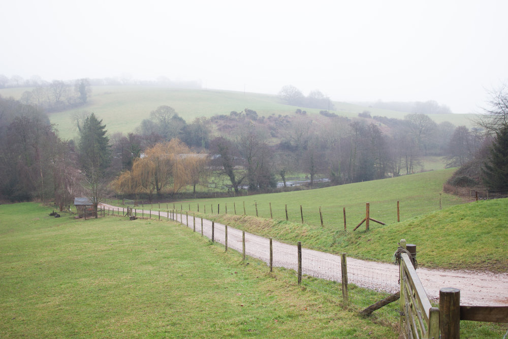 stream_farm_driveway