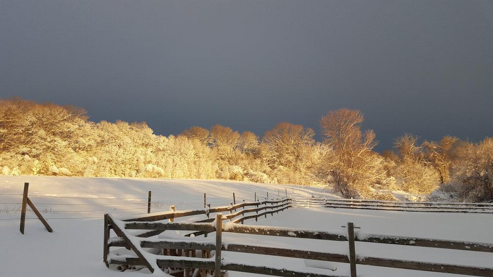 winter_glow.jpg