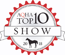 2018+Top+ten+modified+logo_for+website.jpg