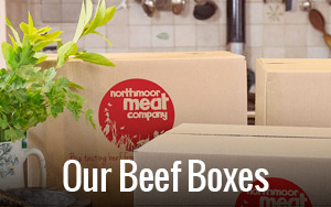 our-beef-boxes.jpg