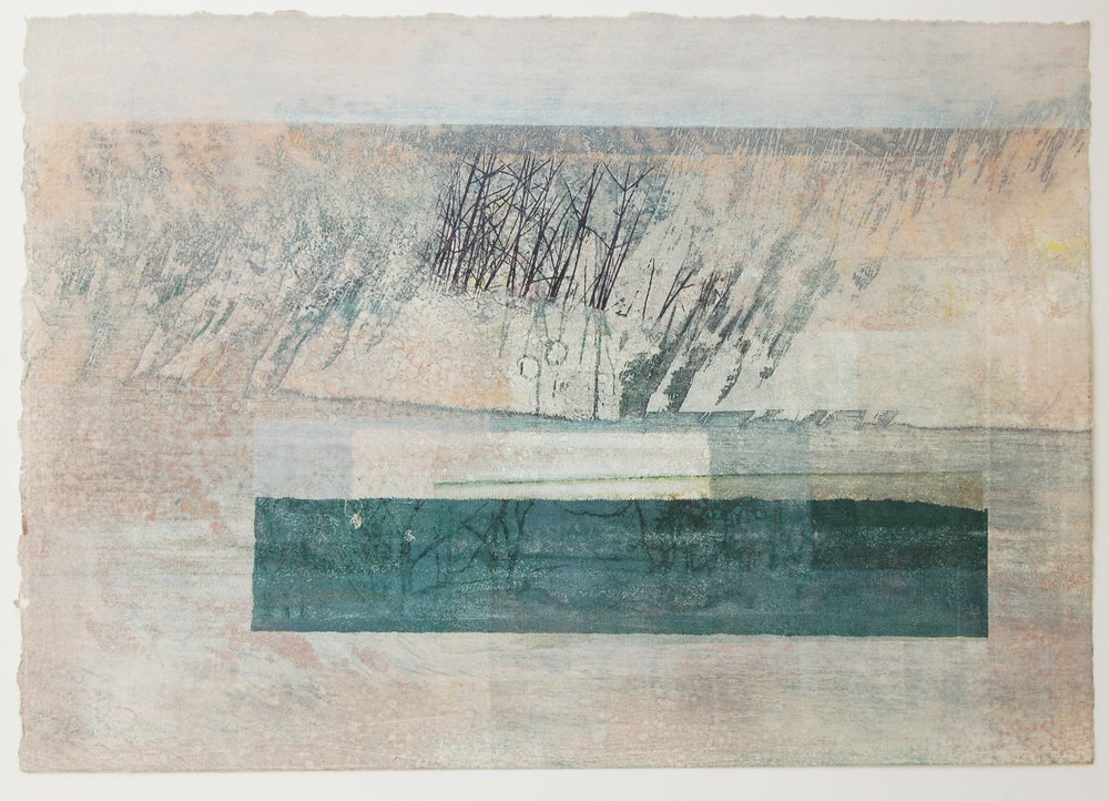 Hide No. 3 Solar etching, mono print 7 mixed media on paper 38 x 28 cm
