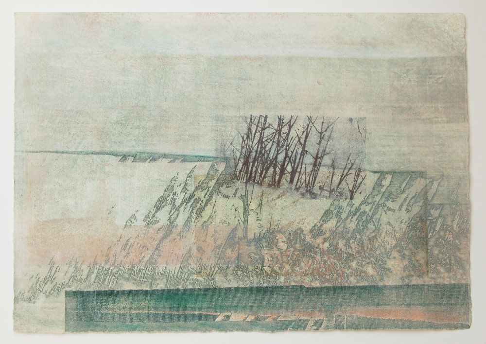 Hide No. 2 Solar etching, mono print & mixed media on paper 38 x 28 cm