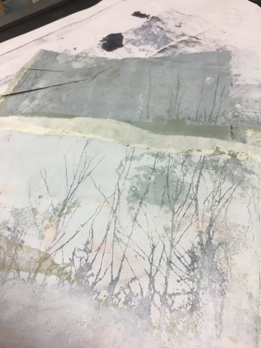 Work in progress, Digswell Print Studio, August 2018. Solar etching and mono print on Japanese tissue.