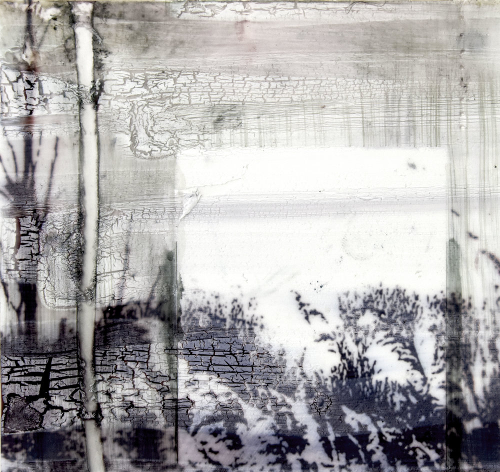 Digital photograph on acetate with acrylic ink