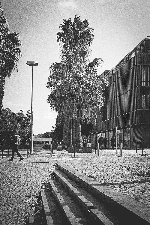 20181201-Lisbonne050.jpg