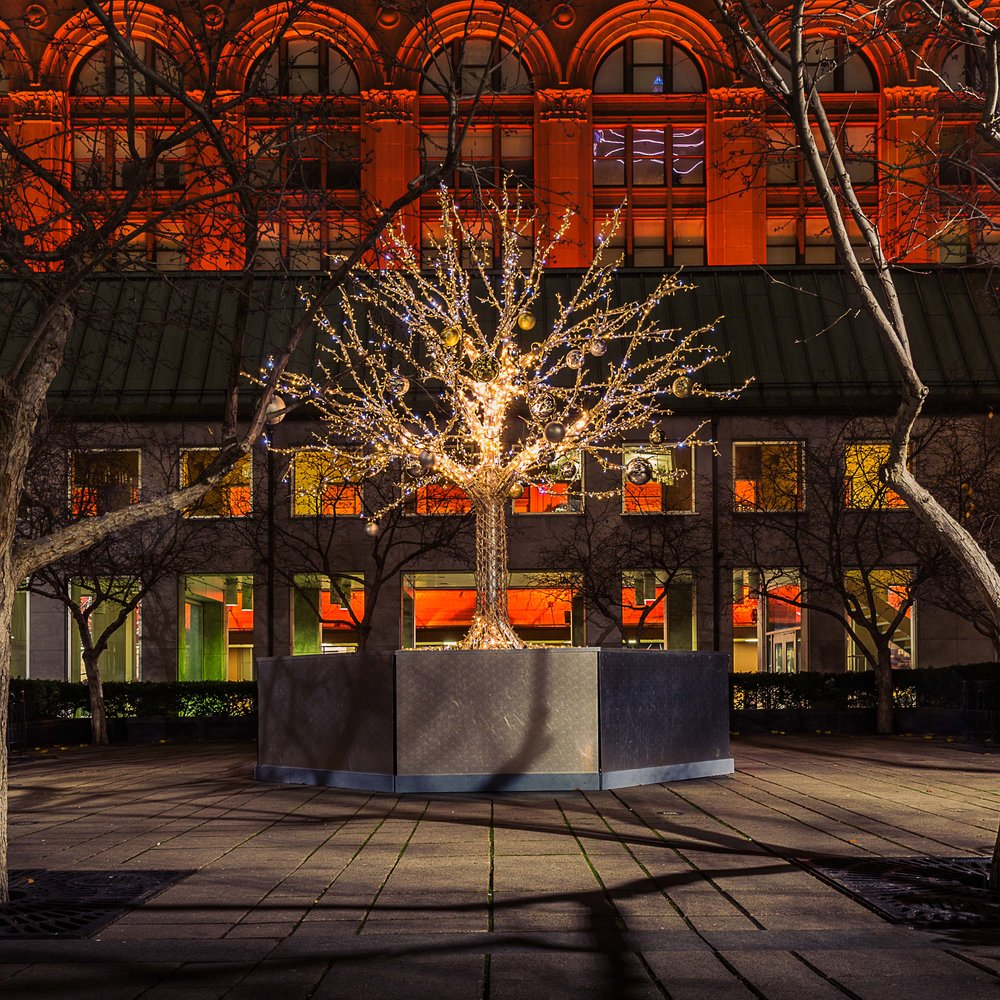 Montreal-Christmas Tree-Captura Camera