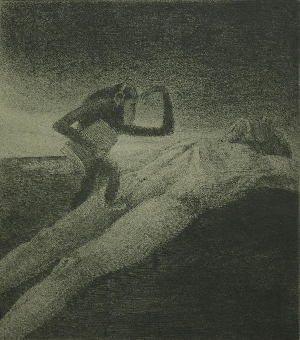 Wissenschaft - collagraphy (collografia) - 1903