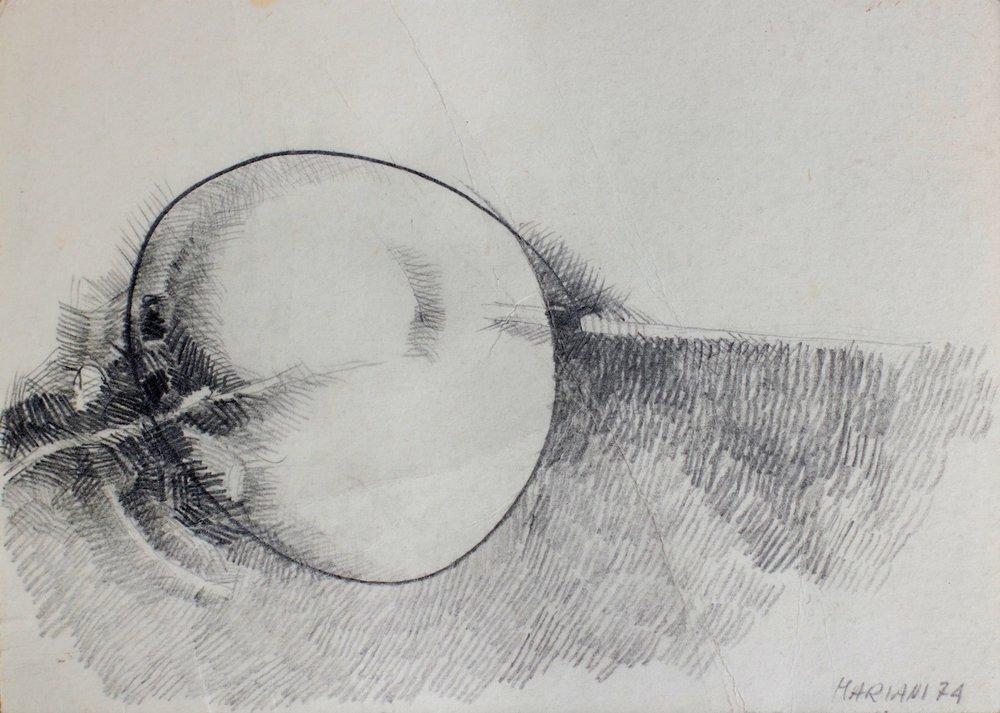 Cellula - Cell / matita e carboncino su carta - pencil and charcoal on paper. 1974
