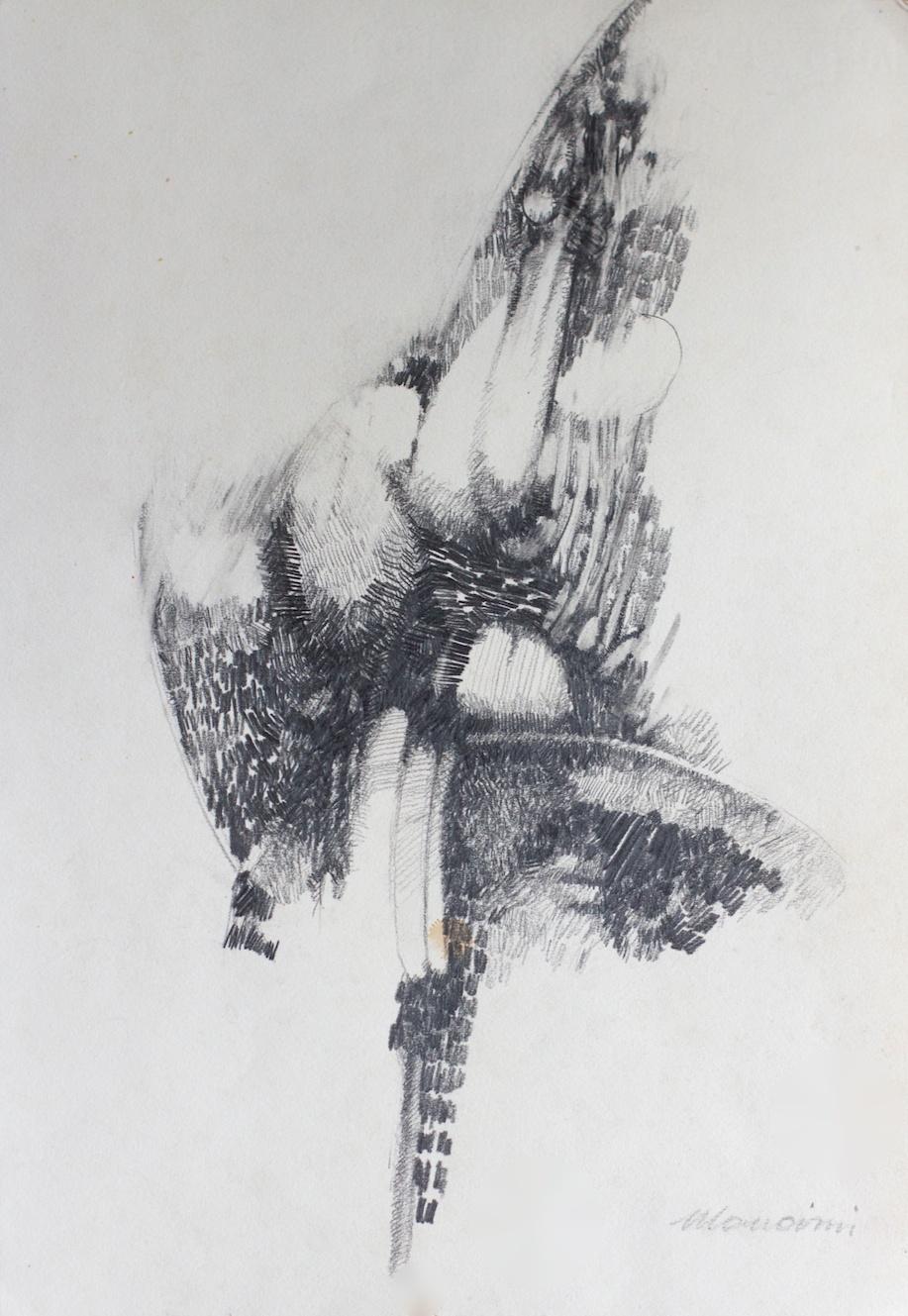 Lacerazioni - Lacerations / matita e carboncino su carta - pencil and charcoal on paper. 1972