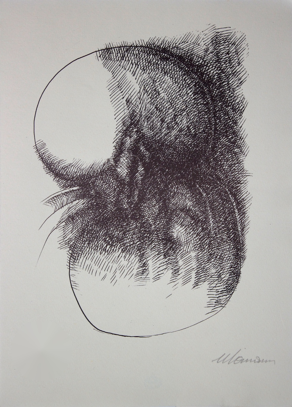 Cellule - Cells / incisione su carta - engraving on paper. 1971