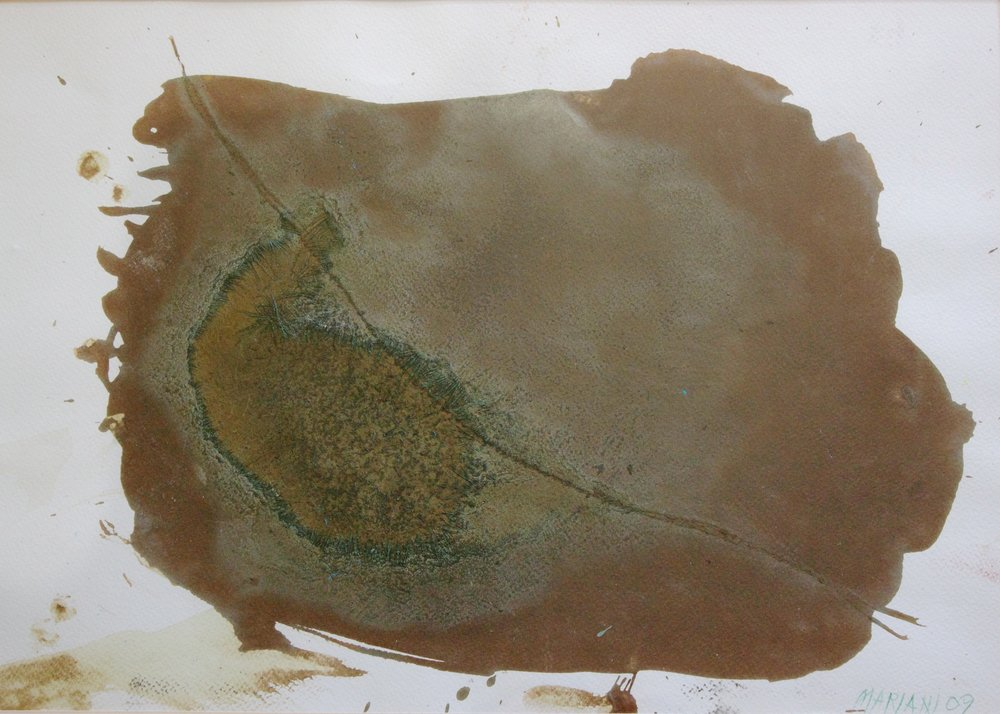 Marcello Mariani - Forma Archetipa - Soil and maceration of herbs on paper - 2009