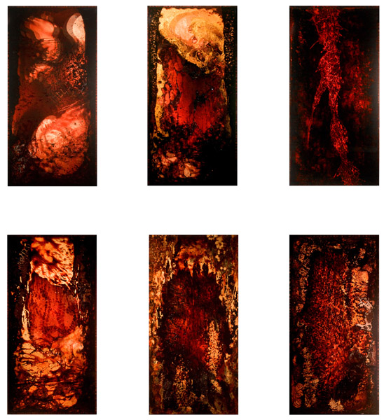"""BARC 1-6"" (2011)<br>Blood, copper preserved on plexiglass, UV resin.<br>40 x 20 x 3 inches (each)"