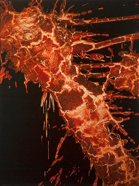 """FKTS17"" (2012)<br>Blood, copper preserved on plexiglass, UV resin.<br>24 x 18 x 2 inches"