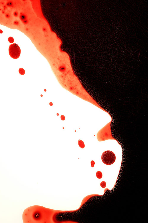 """VFK"" (detail)<br>Blood, resin, preserved on plexiglass<br>48 x 36 x 3 inches"