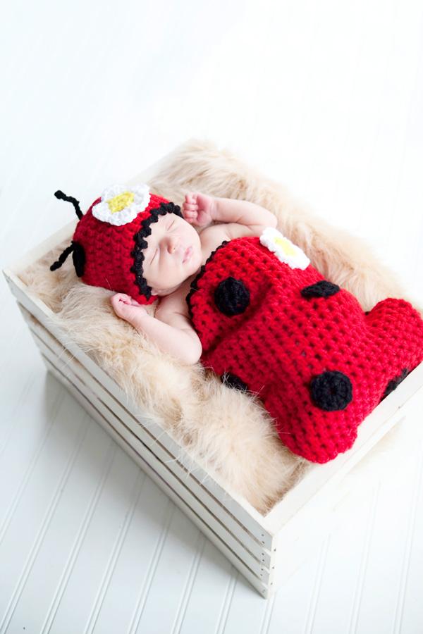 lady-bug.jpg