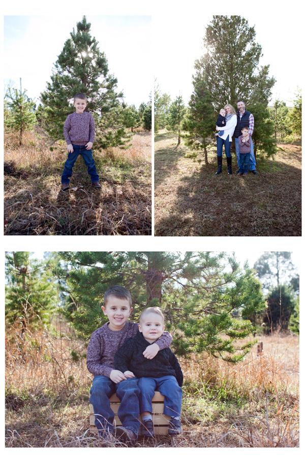 Reston va family photographer