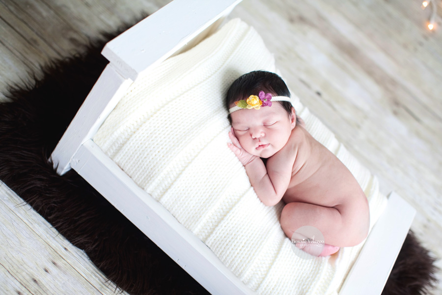 Alexandria VA newborn photography
