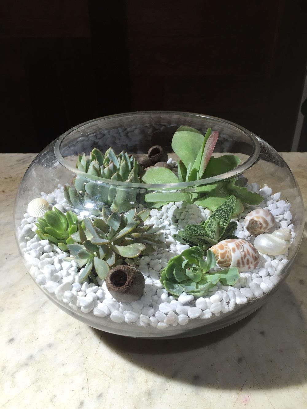 Fish Bowl Terrarium Bohemian Buds
