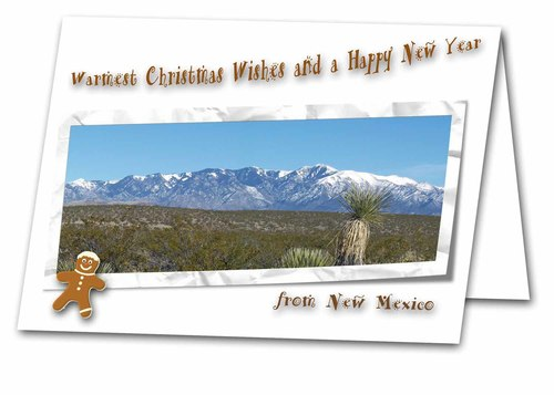 New mexico christmas scripture greeting card bcdesign new mexico christmas scripture greeting card m4hsunfo Choice Image