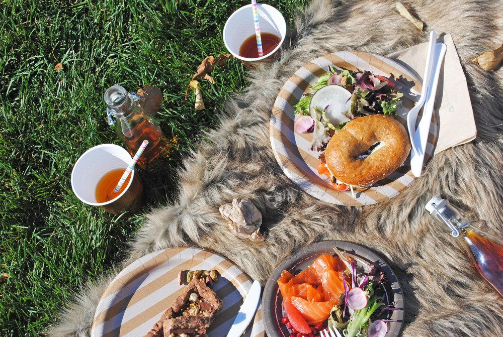 picnic fuzzy.jpg