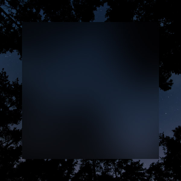 part 2 Wilderness - Night Series