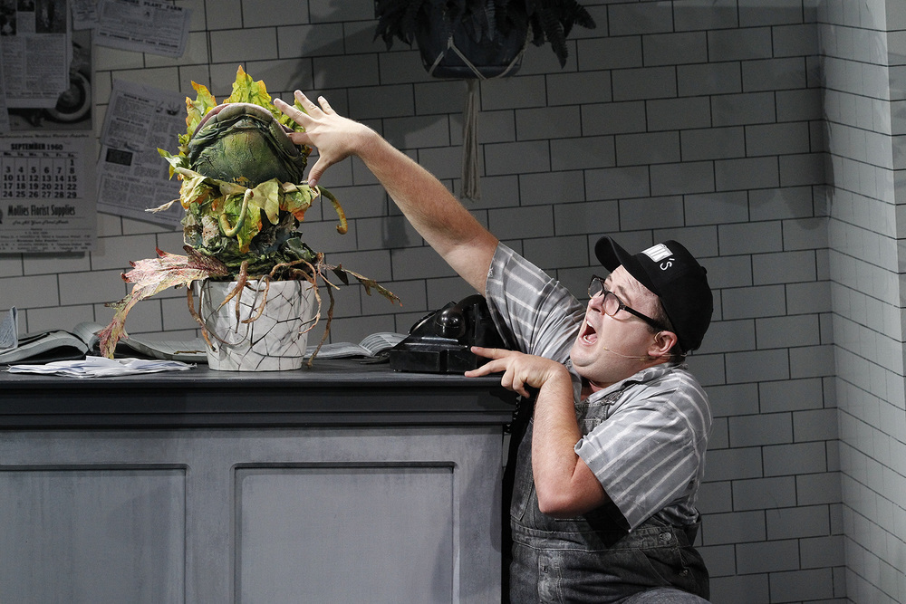 LITTLE SHOP OF HORRORS photo Jeff Busby_1141.jpg