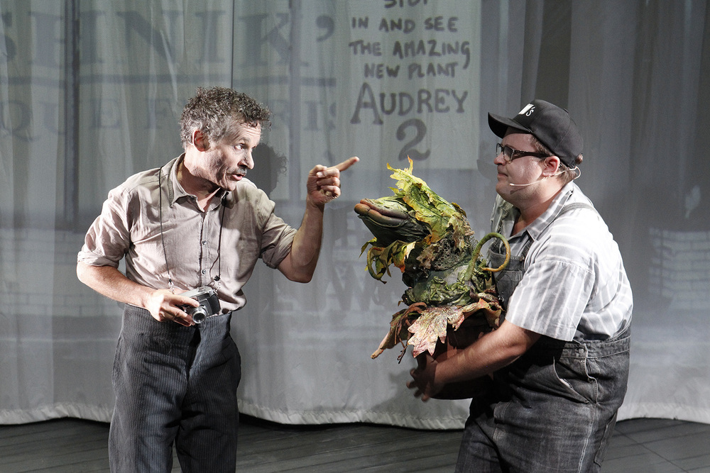 LITTLE SHOP OF HORRORS photo Jeff Busby_1165.jpg
