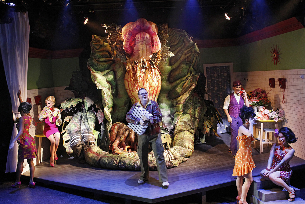 LITTLE SHOP OF HORRORS photo Jeff Busby_1486.jpg