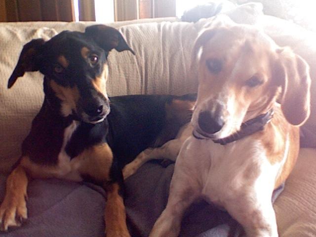 Fivo & his sister Margarita